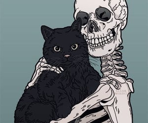 cat, skeleton, and art image