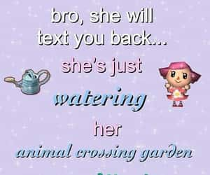 animal crossing, meme, and soft image