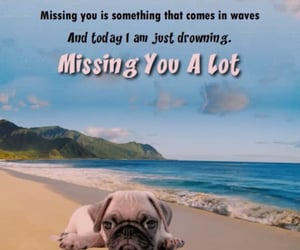 miss you, missing you, and miss you quotes image