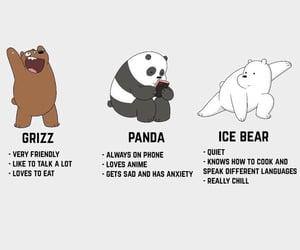 panda, bear, and cute image