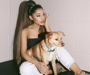 ariana grande, arianagrande, and Toulouse image