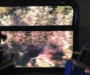 flowers, train, and aesthetic image