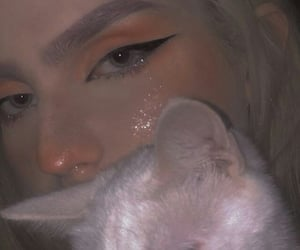 cat, glitter, and white image
