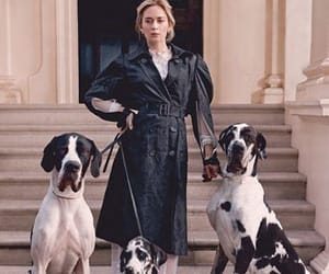 actress, Emily Blunt, and fashion image