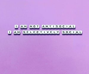 antisocial, lilac, and purple image