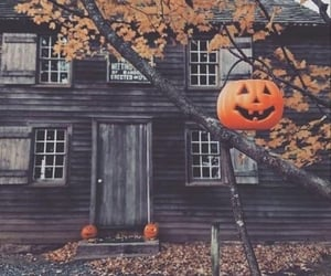 aesthetic, fall, and pumpkin image