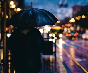 rain and light image