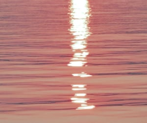 pink, water, and ocean image