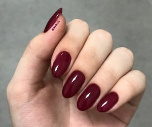 burgundy oval nails image