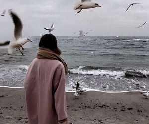 beach, girl, and winter image