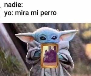 meme and perro image
