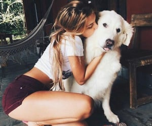 affection, dog, and lover image