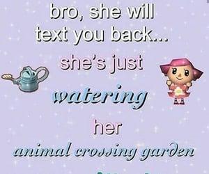 animal crossing, meme, and cute image