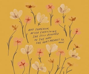 bloom, flowers, and motivation image