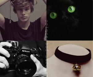black cat, cat noir, and adrien agreste image