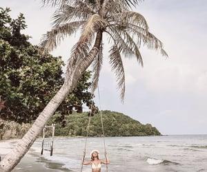 beach, body, and palms image