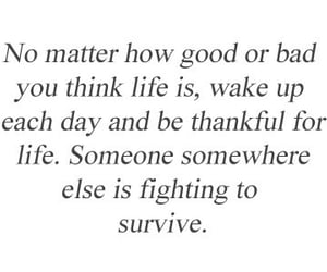 quotes, life, and survive image