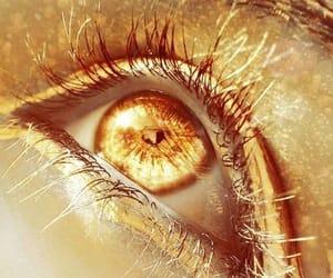 aesthetic, golden, and eye image