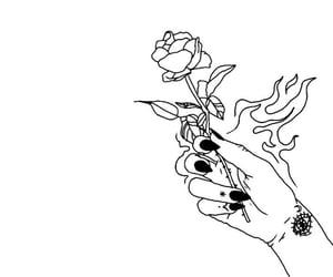 burn, rose, and wallpaper image