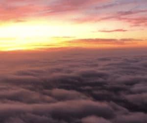 airplane, sunset, and sunset gif image