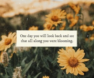 quotes, flowers, and sunflower image
