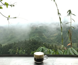 cafe, coffee, and green image