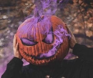 morado, pumpkin, and purple image