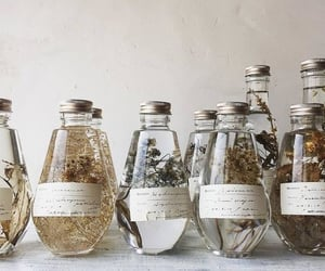 bottles, delicate, and innocent image