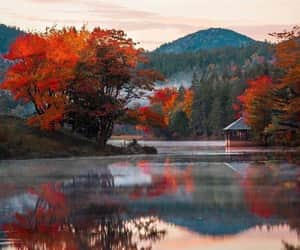 autumn, exteriores, and fall image