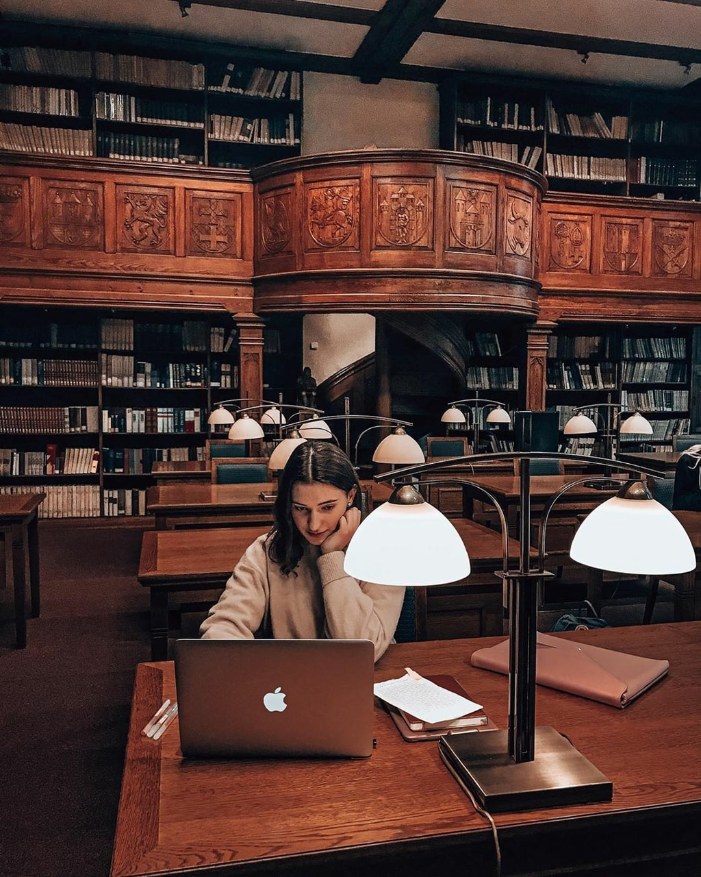 college, library, and university image