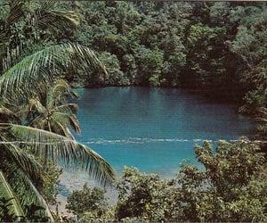 Carribean, jamaica, and jungle image