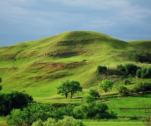 green, africa, and beautiful image