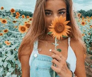 Elle, vintage, and tournesol image