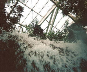 disposable, film, and photography image