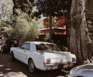 car, landscape, and jc image