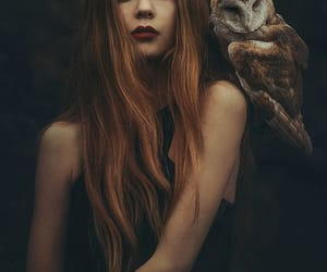 owl, girl, and beautiful image