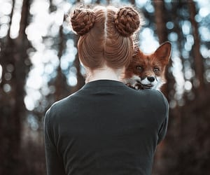 fox, hair, and redhead image