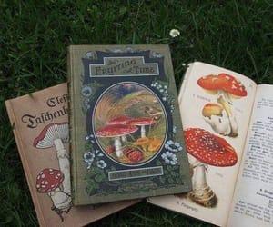 mushrooms, books, and tumblr image