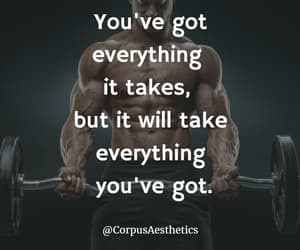 gym, muscles, and bodybuilding image