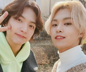 band, the rose, and n.flying image