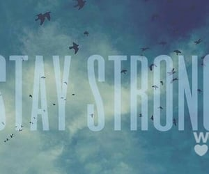 birds, staystrong, and lovatics image