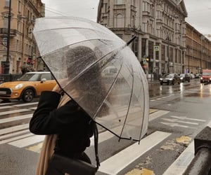 city, rain, and umbrella image