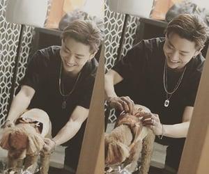 asian, dog, and kpop image