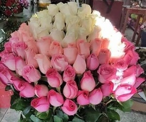 amor, belleza, and flores image