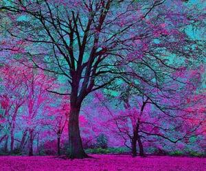 tree, beautiful, and nature image