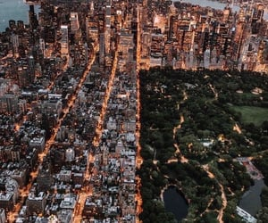 city, Central Park, and new york image