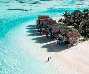 Maldives, ocean, and summer image