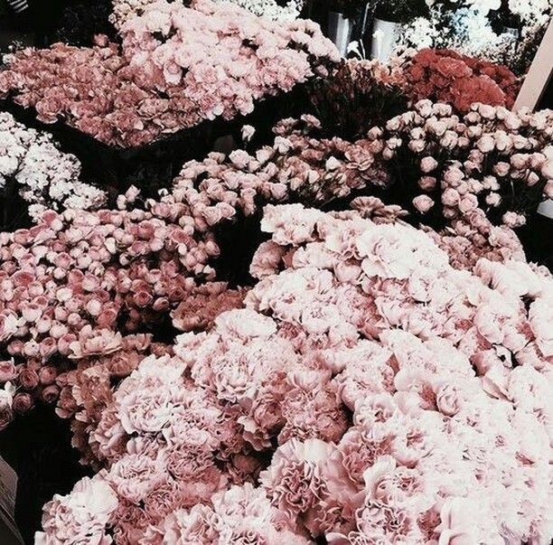 291 Images About Rose Gold Aesthetic On We Heart It See More About Rose Gold Pink And Aesthetic
