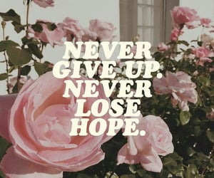 quotes, hope, and never give up image