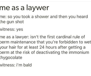 funny, Law, and school image